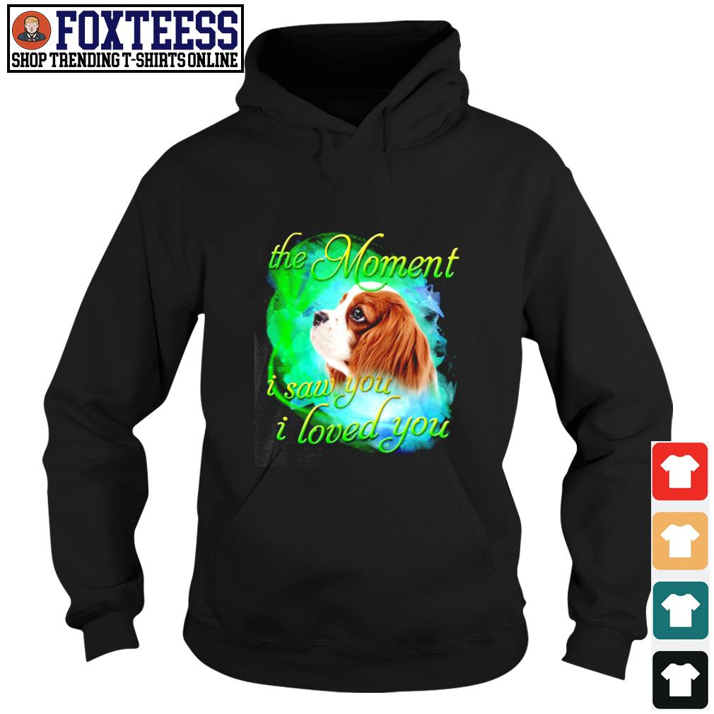 Spaniel the moment I saw you I loved you s hoodie