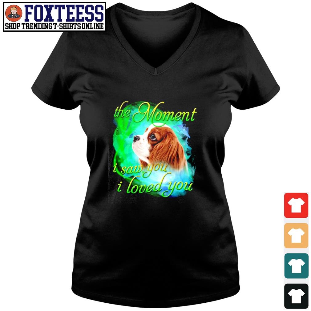 Spaniel the moment I saw you I loved you s v-neck t-shirt
